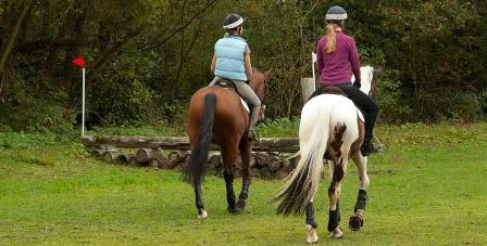 Horse Riding Weekends Uk Riding Weekends Hampshire