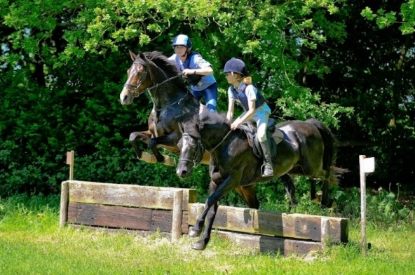 Own Horse Training Shropshire
